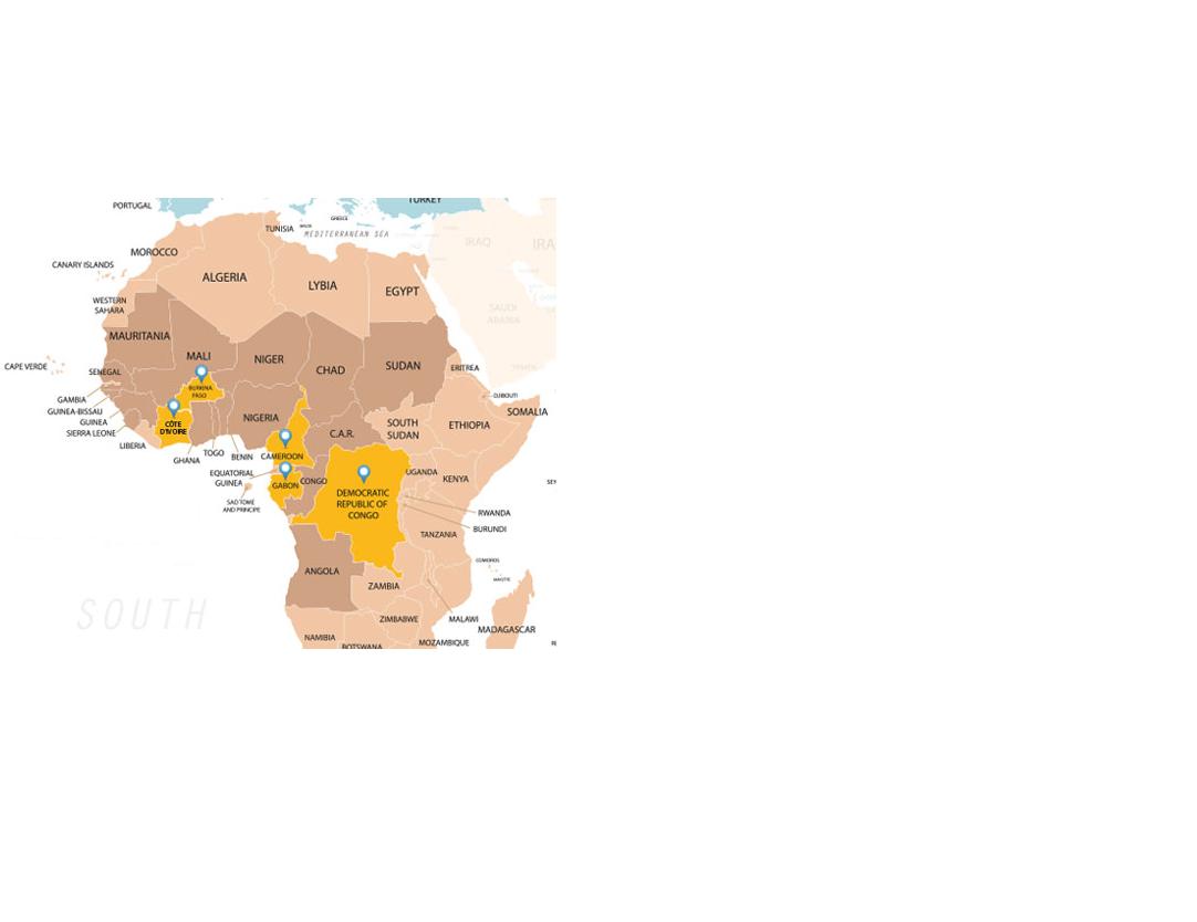 Presence dans pays d afrique